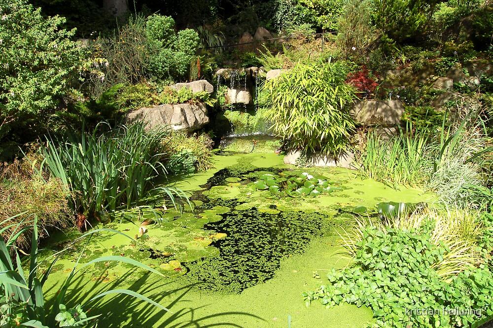 The garden  by kristian hellwing
