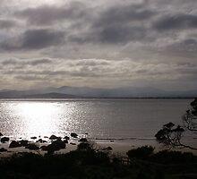 Stormy morning light by Christine Beswick