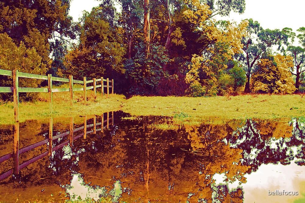 Autumn Splash by bellafocus