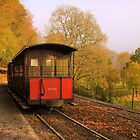 Train to Han-sur-lesse caves by Jay Mody