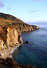 California Dreaming by Jan Cartwright