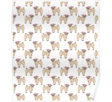 Pug dogs cute repeating pattern Poster