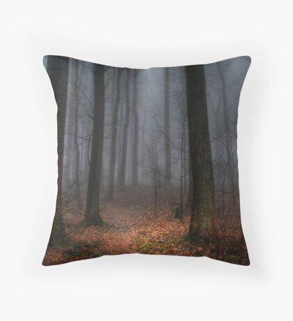 Misty Path to Flat Top Mountain Throw Pillow
