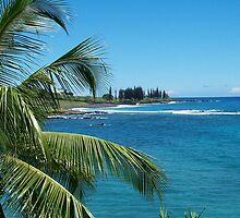 Maui by StudioN
