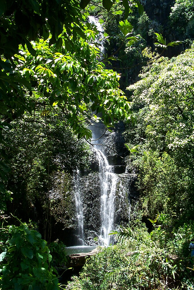 Maui Waterfall by StudioN