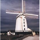 Blenerville Windmill, Tralee, Co.Kerry, Ireland by Margaret Zita Coughlan