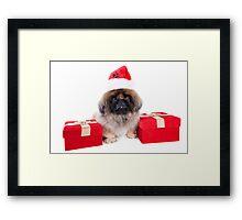 Christmas Pekingese Framed Print