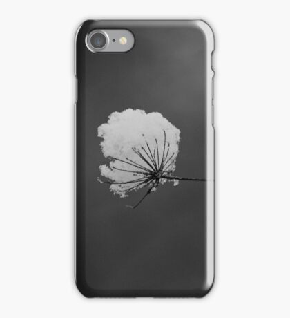 Before the Thaw iPhone Case/Skin