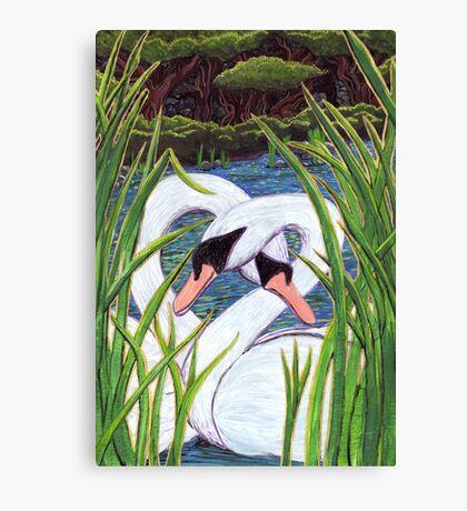 Swans Hello  Canvas Print