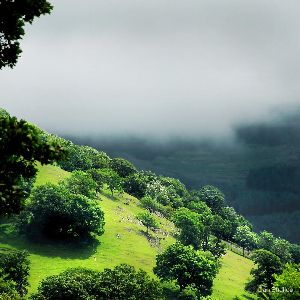 green beneath the mist by Dan Shalloe