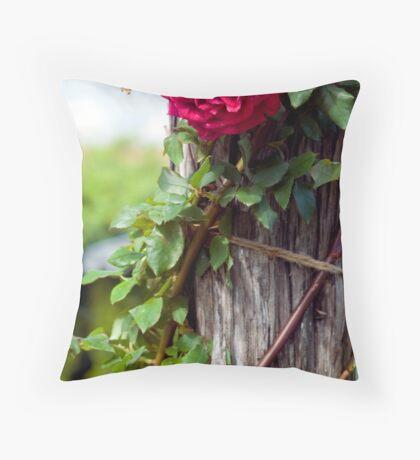 Rose on stump Throw Pillow