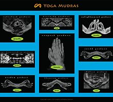Mudra Collection (2008) by Infinite Path  Creations