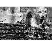 The Gargoyle Photographic Print