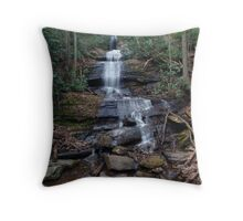 Desoto falls Throw Pillow
