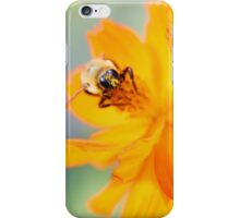 Facsinating iPhone Case/Skin