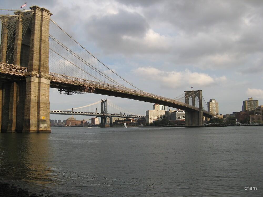 Brooklyn Bridge, New York by cfam