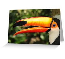 Portrait of a Toco Toucan at Iguassu, Brazil  Greeting Card