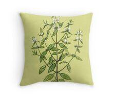 Annual Wundwort - Stachys annua Throw Pillow
