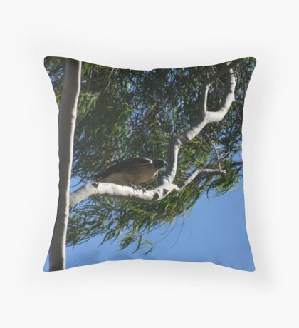 Red Tail Hawk in Tree Throw Pillow