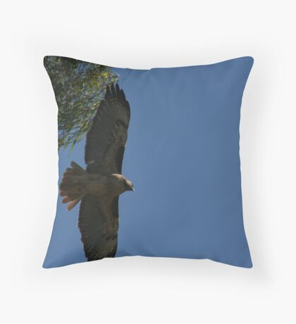 Red Tail Hawk in flight Throw Pillow