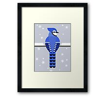 J is for Jay Framed Print