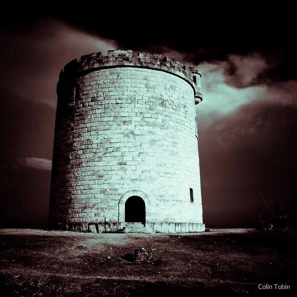 Quixote by Colin Tobin