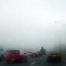 Morning fog by Valeria Lee