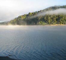 The Beauty of Waikaremoana by DaveCCC