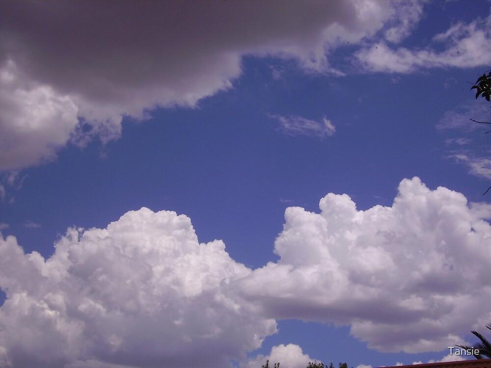 Sky by Tansie