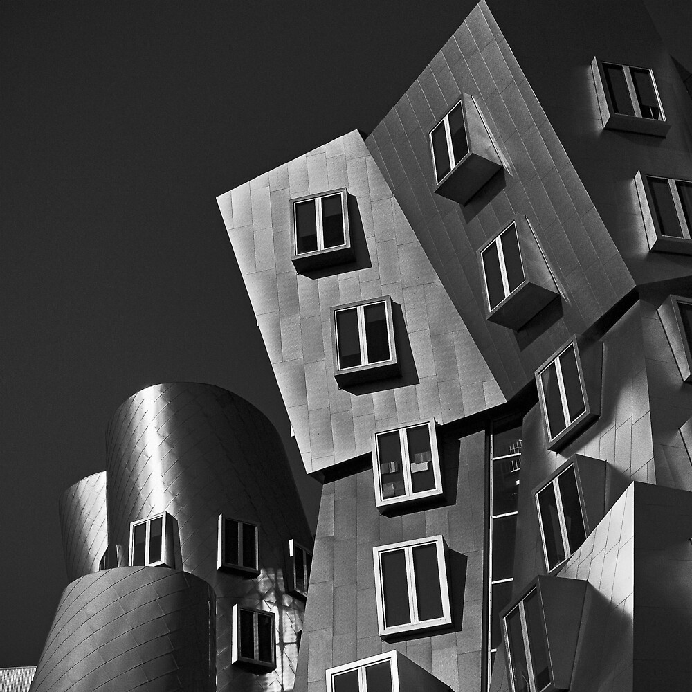 Gehry by Michael Mancini