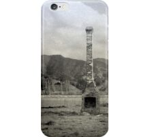 In a field near Waioeka Pa  iPhone Case/Skin