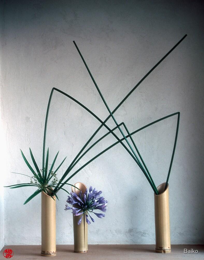 Ikebana-002 by Baiko