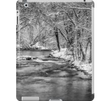 Winter On The Waupaca River iPad Case/Skin