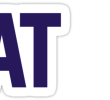 Crazy Cat Man Sticker