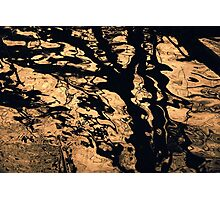 Melted Chocolate abstract photograph. Photographic Print