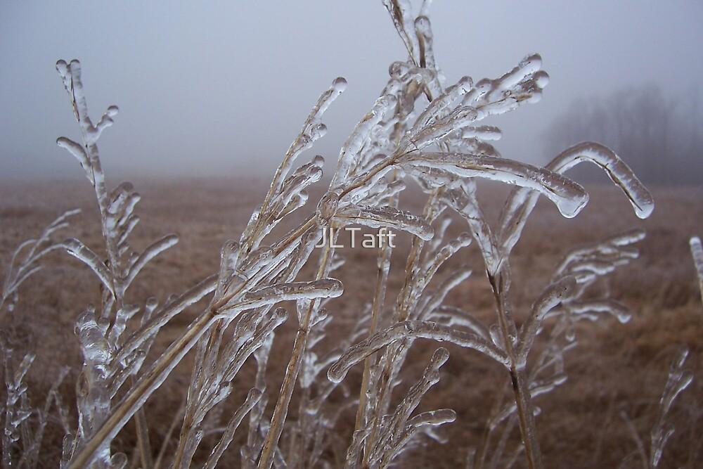 Ice on Wheat by JLTaft