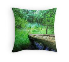 Back to Nature Throw Pillow