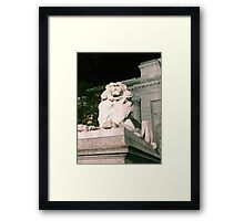 NY Public Library Framed Print