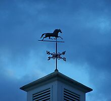 Weathervane by Gene Cyr