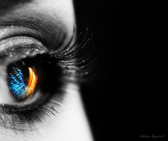 Eclipse by Antoine Dagobert