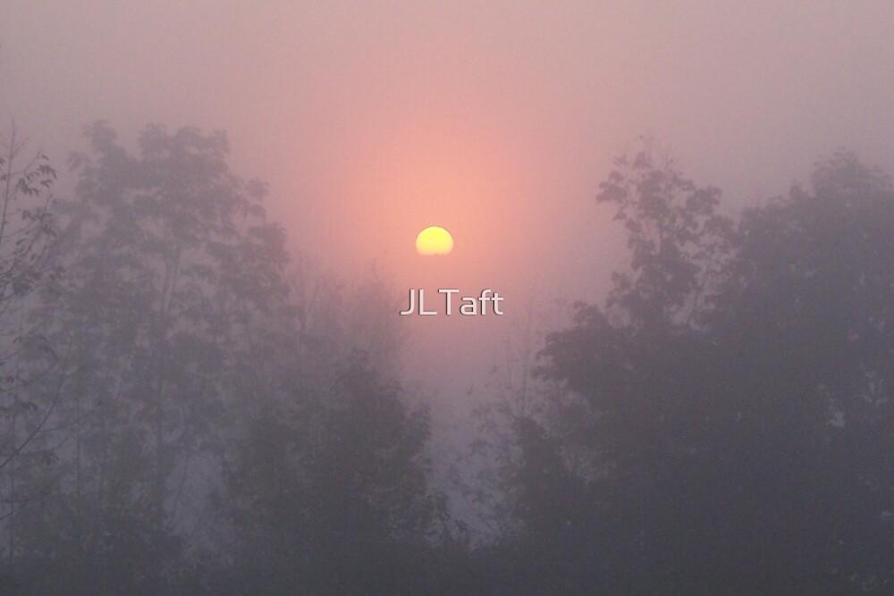 Pink Fog by JLTaft