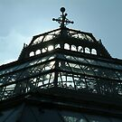 The Palm House Sefton Park Liverpool by PhotogeniquE IPA