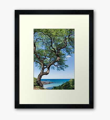 Serenity Tree Framed Print