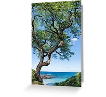 Serenity Tree Greeting Card