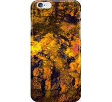 valley of the fire horses iPhone Case/Skin