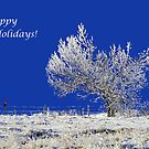 Happy holidays! by Cornelia Togea