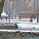 Our First Snow by Susan S. Kline