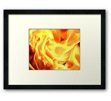 flaming rose Framed Print