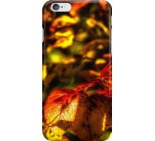 Autumn rose leaves iPhone Case/Skin