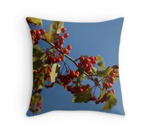 The Way it Grows Throw Pillow